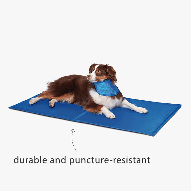 durable and puncture-resistant
