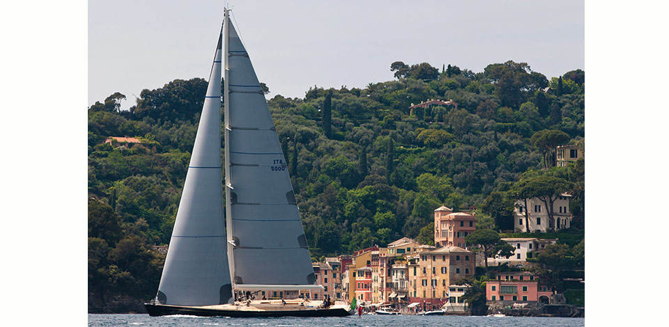 Conquer the waves off the Ligurian coast with an Olympic sailor