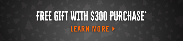 FREE GIFT WITH $300 PURCHASE* LEARN MORE