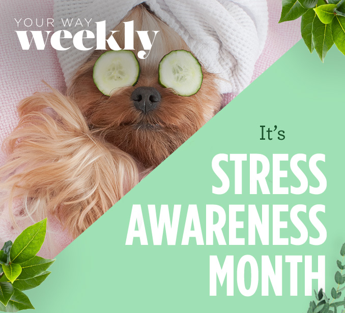 YOUR WAY WEEKLY | It's STRESS AWARENESS MONTH