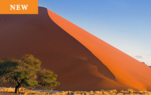 Tailor Made Namibia