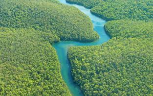 Machu Picchu & the Amazon
