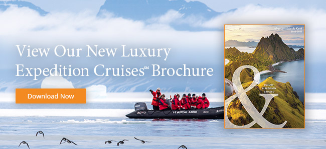 Experience Our Most Thrilling Season of Adventures at Sea