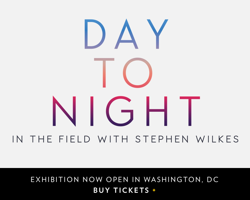 Day to Night | EXHIBITION NOW OPEN+
