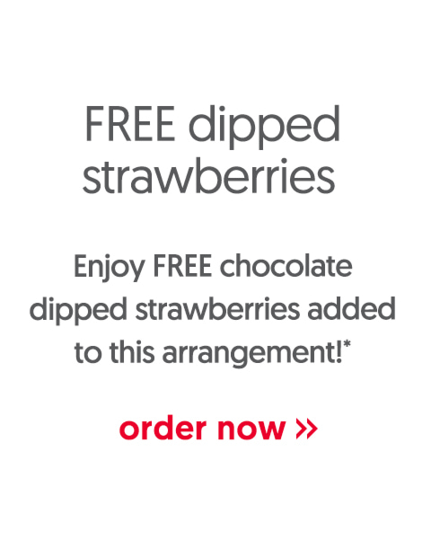 Enjoy FREE chocolate dipped strawberries added to this arrangement! - order now